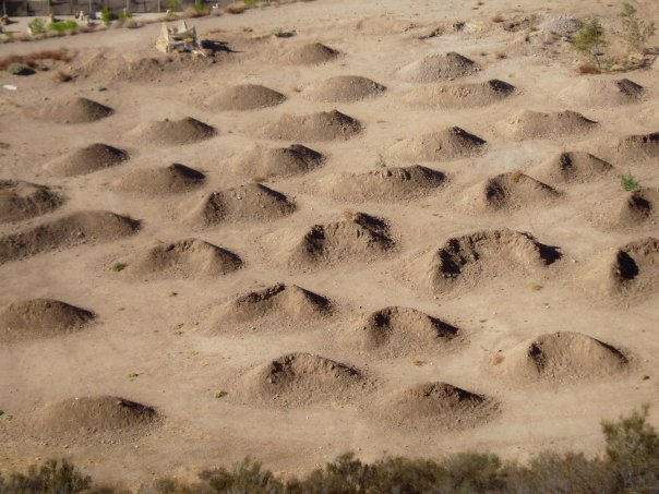Dunes at Paintball USA